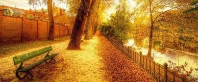 Akcemi se to na konci léta a na podzim jen hemžilo!