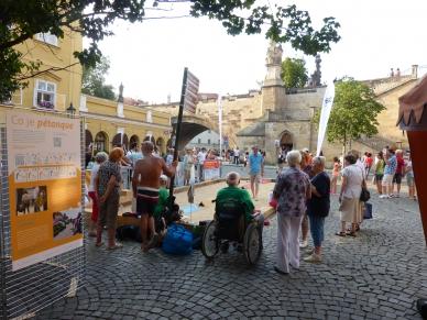 Kampa pétanque - trh s dobrotami a 2 hřiště na pétanque u Karlova mostu!